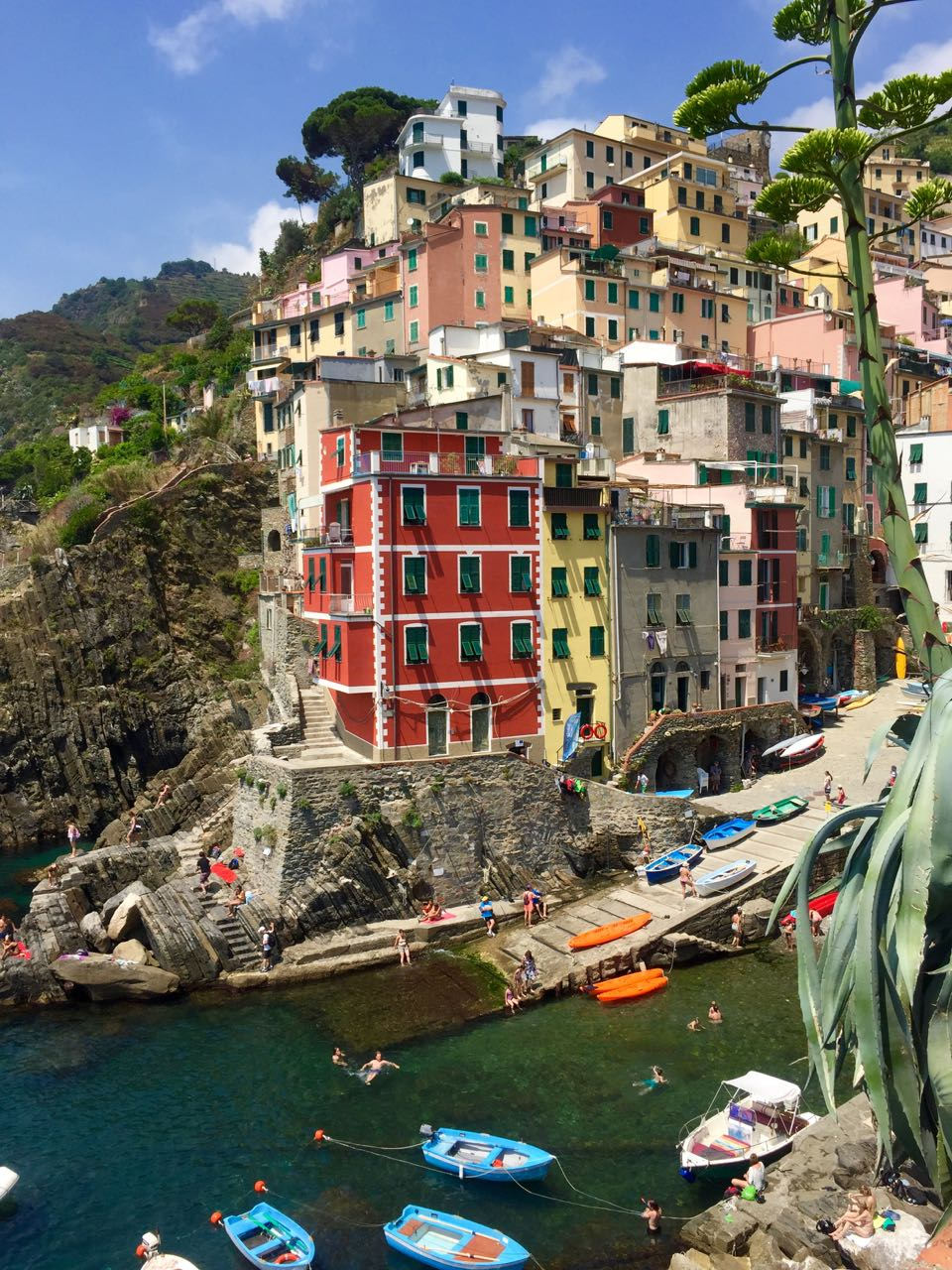Riomaggiore Bright Buildings on Cliff
