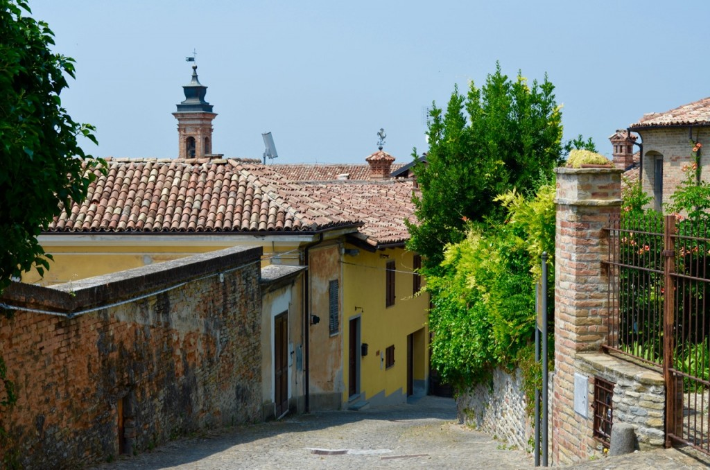Wine tour Nieve Italy