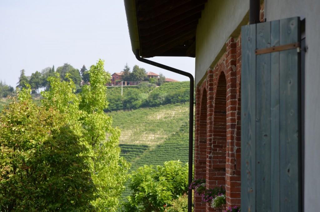 View of Rizzi Estate Barbaresco