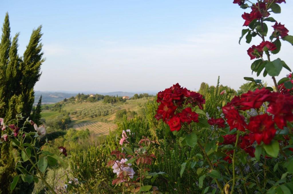 Tall Travel Style Tuscany