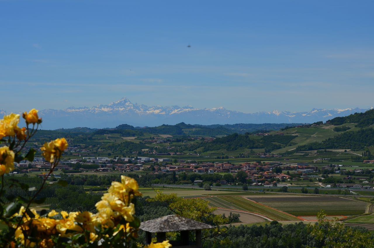 View of the Alps from Piedmont