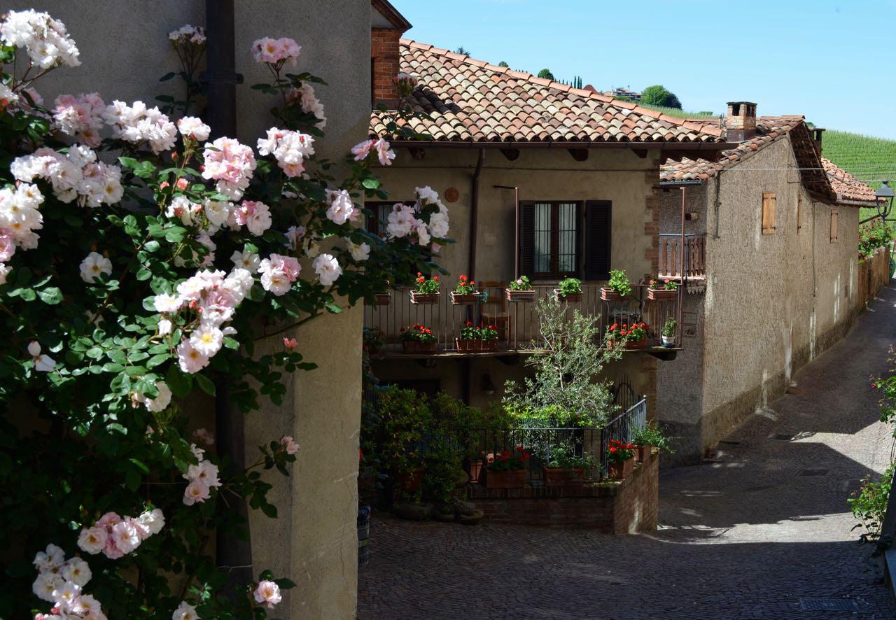 Barolo Piedmont