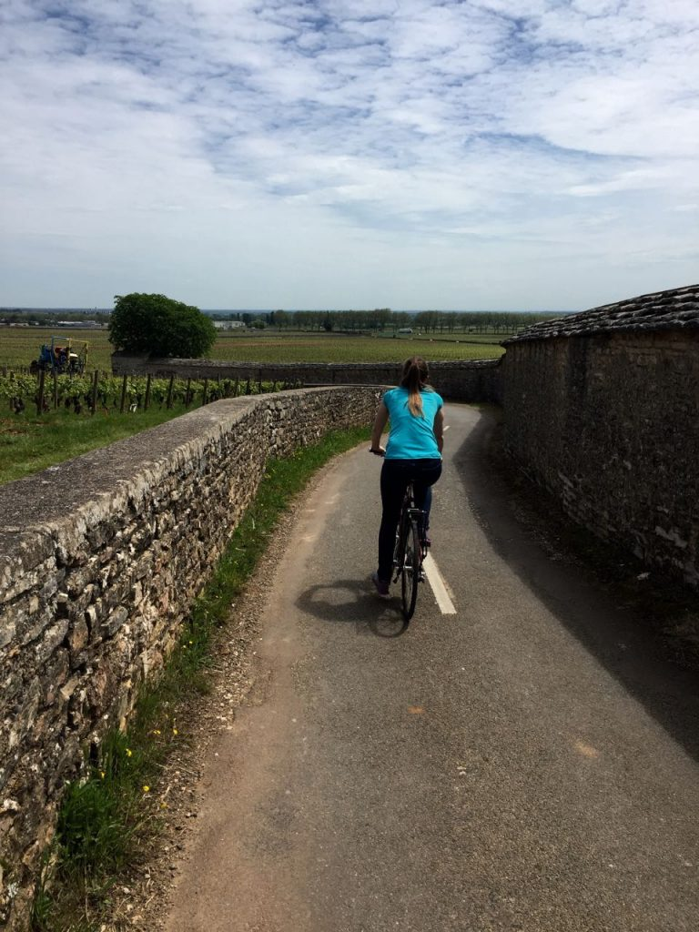 Bike riding through Burgundy vineyards
