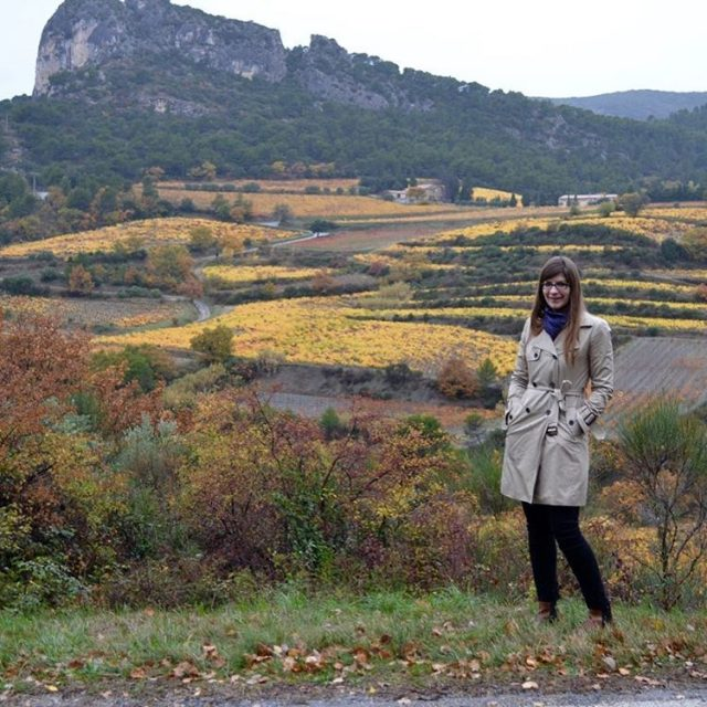Happy Thanksgiving from rainy but colorful Provence!
