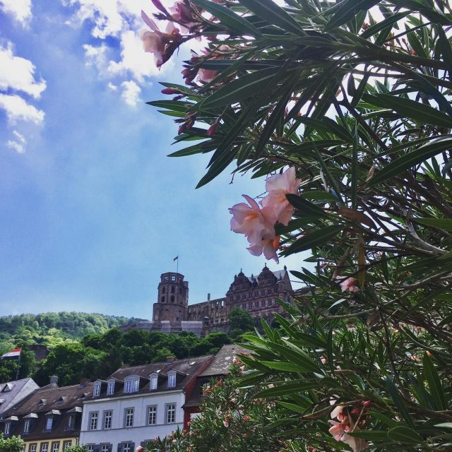 Having such a lovely day trip to Heidelberg The weatherhellip
